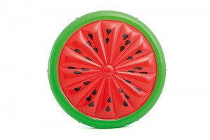 Factory selling Cactus Pool Float -