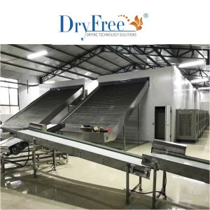 Special Design for Meat Drying Equipment -