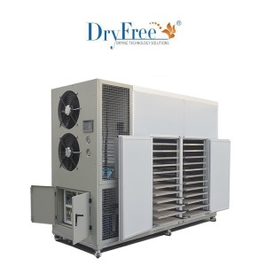 Fruits Dry En Dehumidify Machine