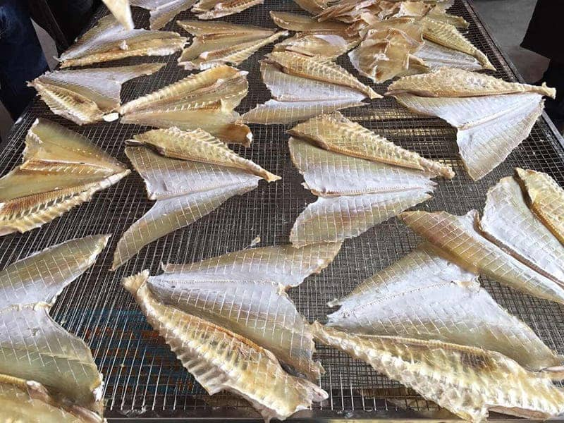 Making nutrient dried fish by fish dehydrator