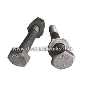As1252-Grade-8-8-HDG-Nut-M12-M36