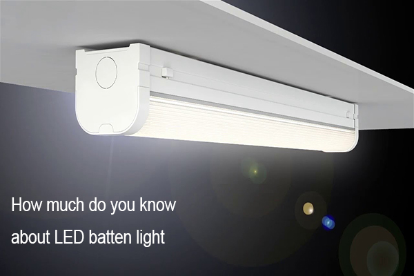 How much do you know about led batten light?