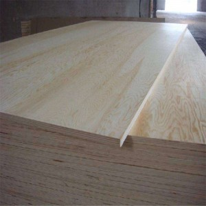Edlon pine veneer coated 5mm door size plywood
