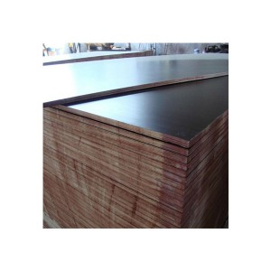 High reputation 20mm Black Film Faced Plywood - film faced plywood – Edlon