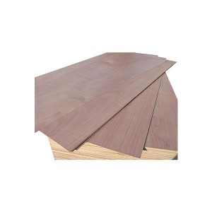 Fixed Competitive Price Melamine Plywood For Middle East Market - Door-Size-Plywood – Edlon