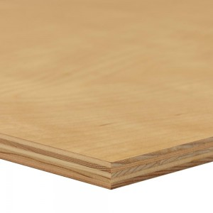 Edlon 5×10 13mm UV coated plywood for furniture making