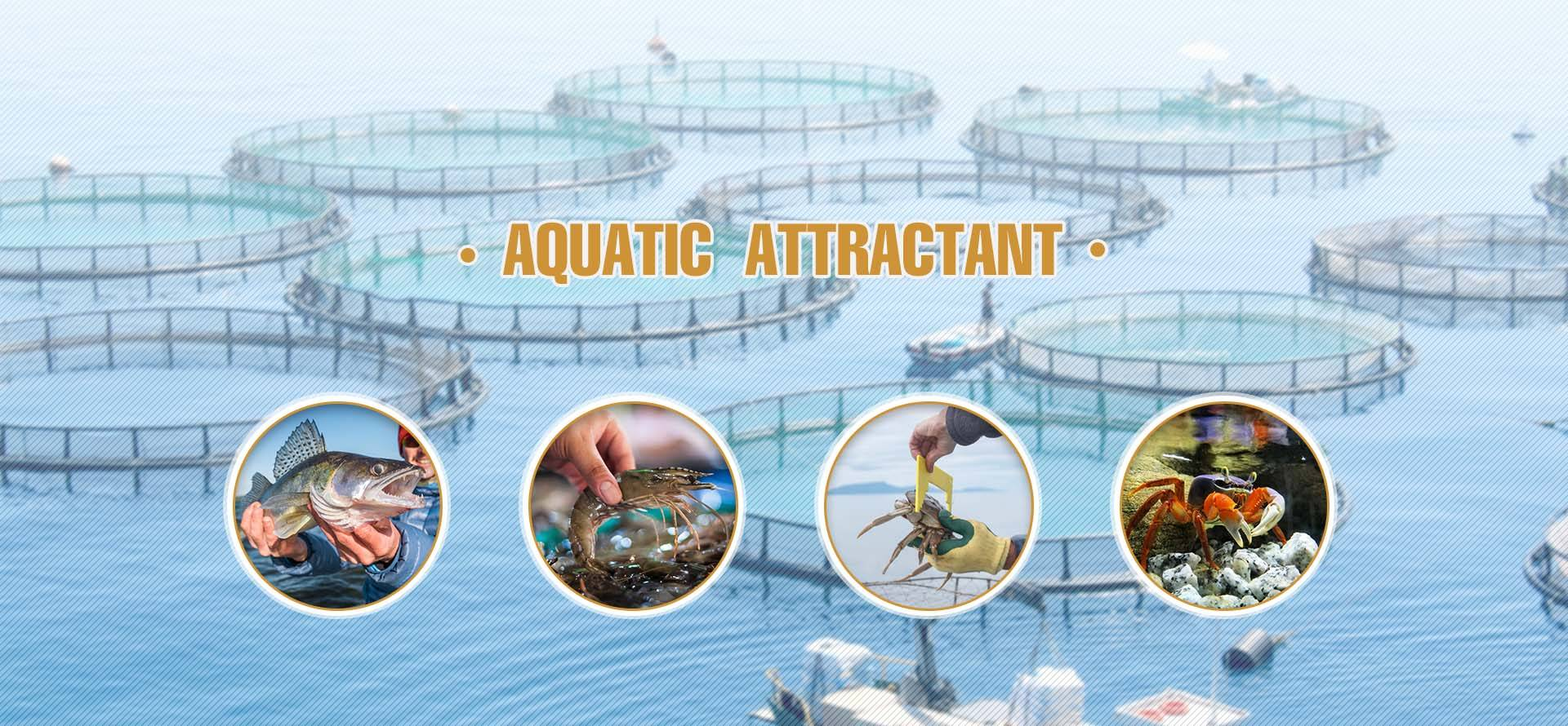 AQUATIC ATTRACTANT