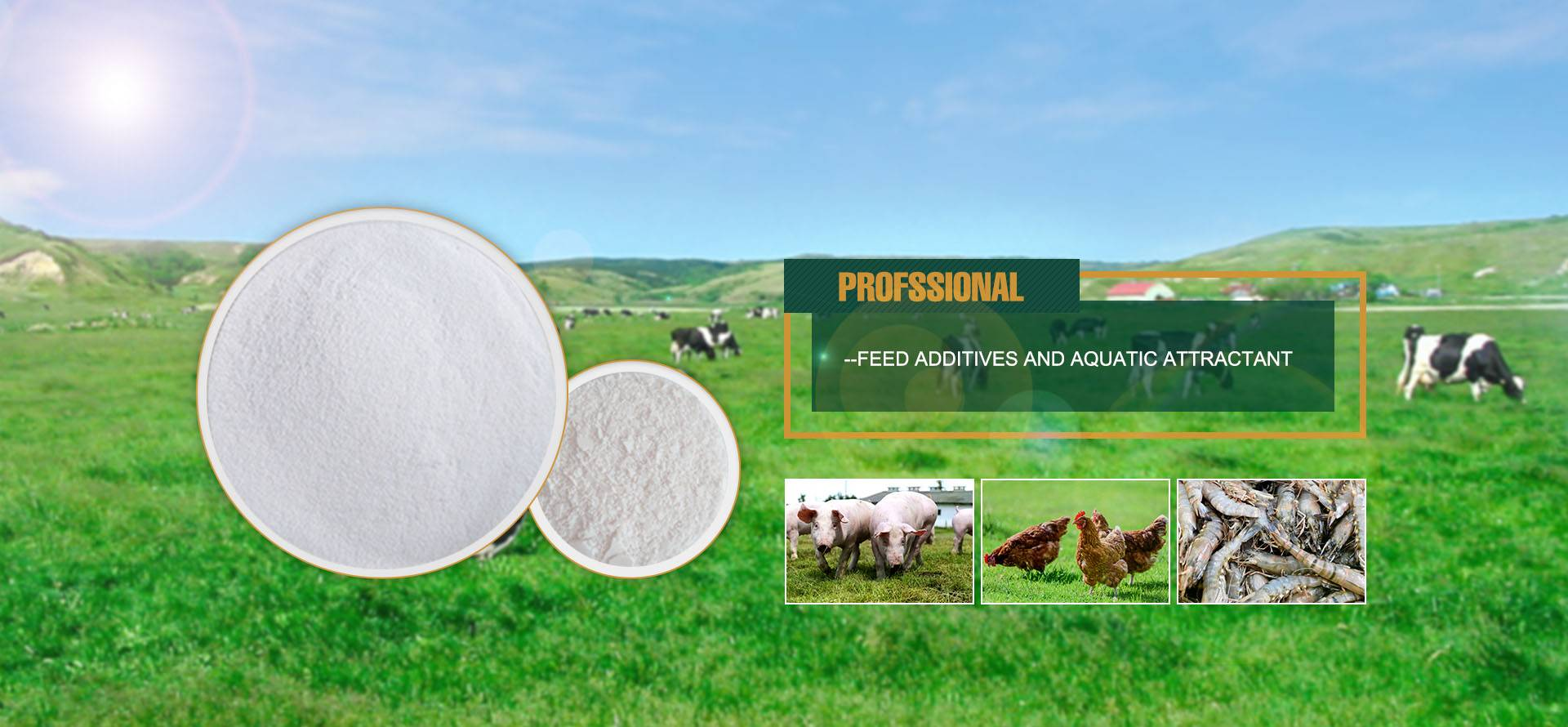 FEED ADDITIVES AND AQUATIC ATTRACTANT