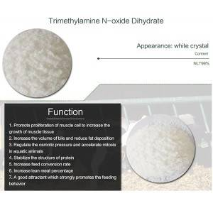 Top Suppliers Dorking Betaine -