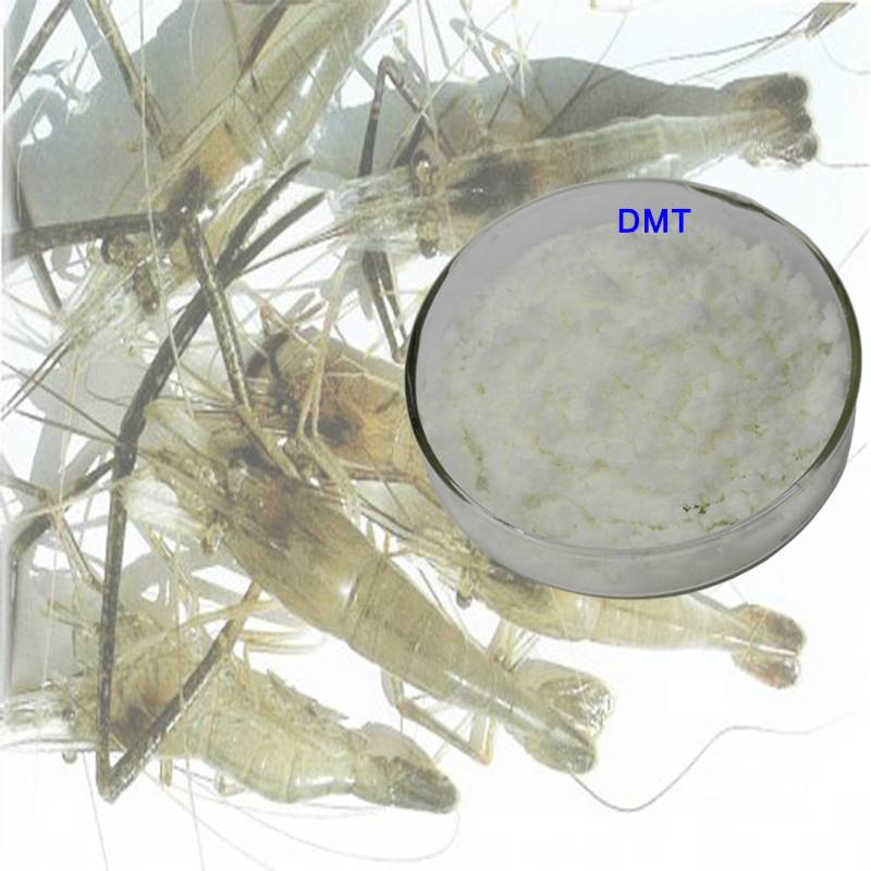 OEM China Types Of Feed Additives -