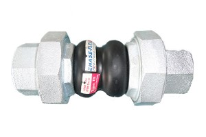 Manufacturer of U Shape Compensation - EH-30H Double Sphere Rubber Joint with Union – Ehase-Flex
