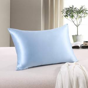 22MM Queen Size Silk Pillowcase EIT-031