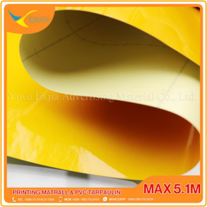 China Supplier 5m Backlit -