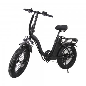 VB210 Assisting Wide Tire Foldable 20 inch Electric Bike