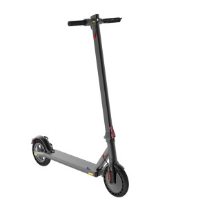 New Delivery for Two Wheel Scooter -