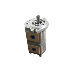 Manufacturer for Coating Gear Pump - Gear pump CBWL – Fitexcasting