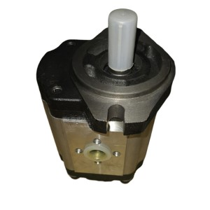 Discountable price Hpv0102 Hydraulic Pump - Gear pump CBT-F4 – Fitexcasting