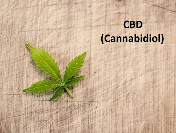 Your Questions About CBD, Answered