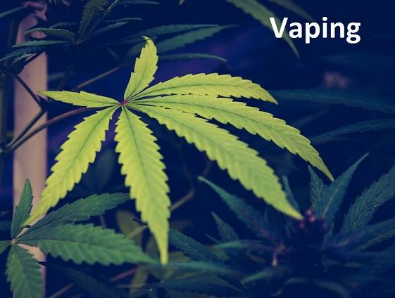 CBD Vaping and its Beneficial Effect on the Body