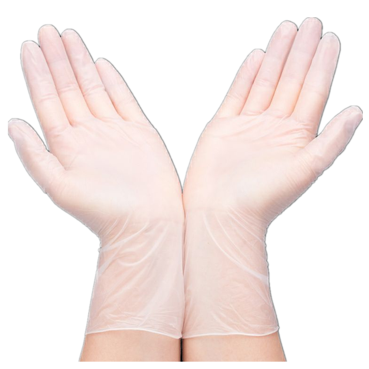 low price clear protection household pvc glove disposable glove for medical