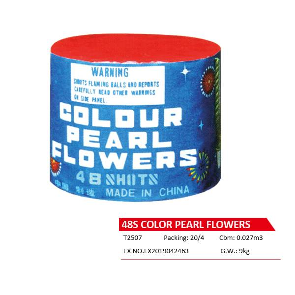 T2507  48S COLOR PEARL FLOWERS