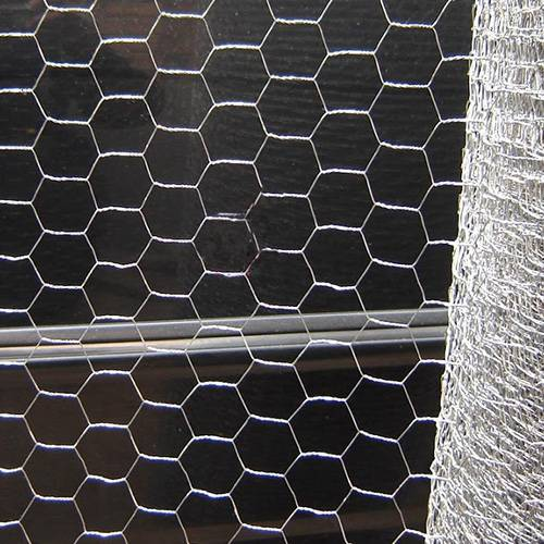 Hexagonal Wire Netting Featured Image