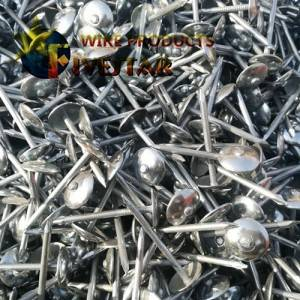 Galvanized Umberlla hlooho Roofing Nails