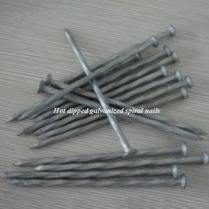 Hot dipped galvanized spiral shank nails