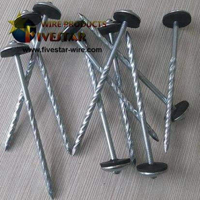 Umbrella Head Screws roofing nails with washer Featured Image