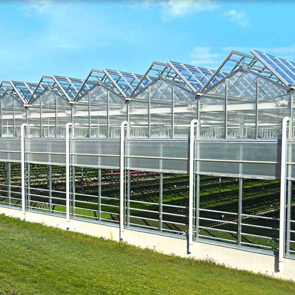 Europe style for Modern Design Greenhouse -