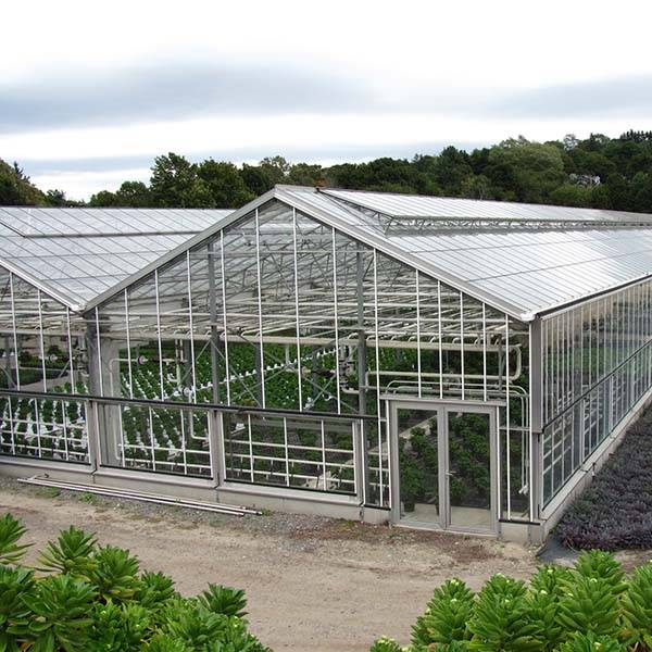 2018 wholesale price Stainless Steel Pipe And Tube - glasses greenhouse – FIVE STEEL