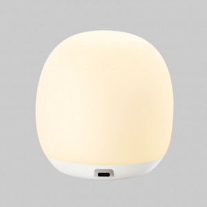 LED Portable Lamp S300P