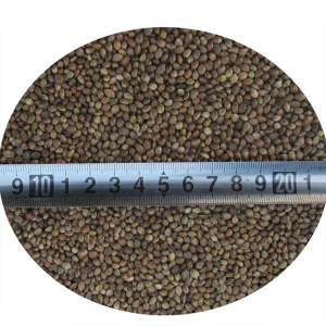 Hulled Hemp Seed Min 55% Oil Content Pure Organic Hemp Seeds for Sale