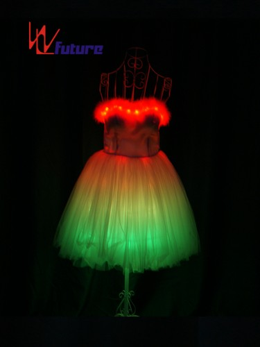 China Professional Customized LED Light up Dress Costume WL-0169