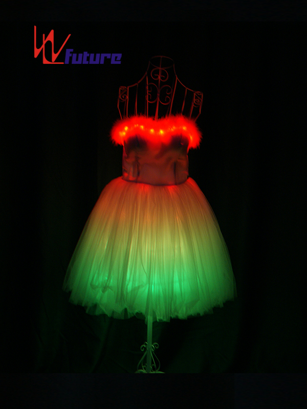 China Professional Customized LED Light up Dress Costume WL-0169 Featured Image