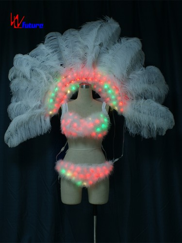 Sexy LED Light Up Bra & Pants & Feathers Dance Performance Wear WL-0187A