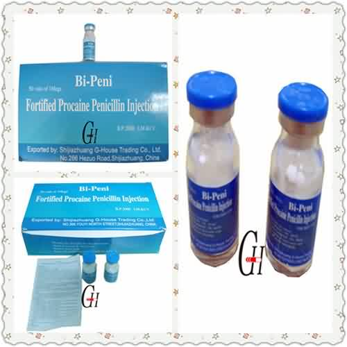 Manufacturing Companies for Veterinary Compound Vitamin B -