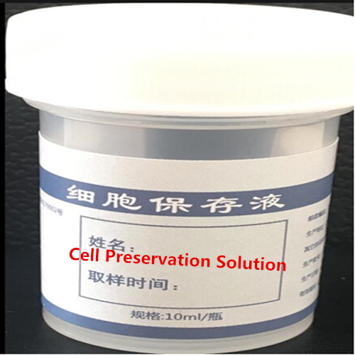 Gynecology Cell Preservation Solution Featured Image