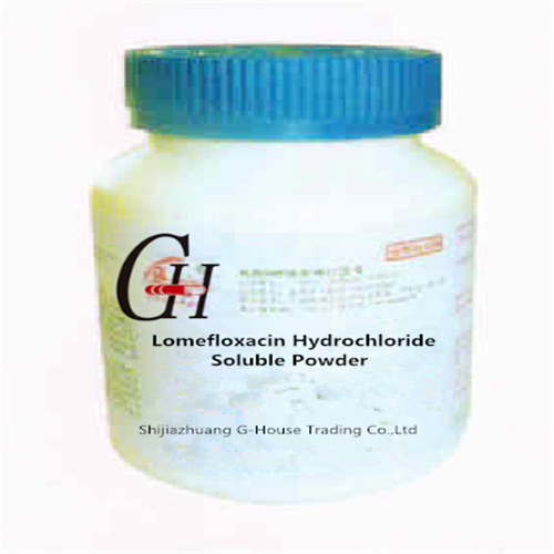 Factory source Carbocistein Syrup -