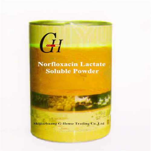Manufacturer for Synthetic Antibiotic -