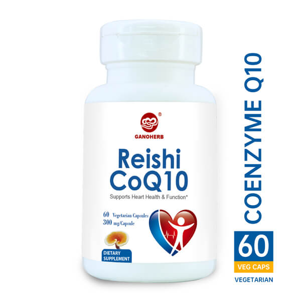 Factory Cheap Raw Reishi Mushroom -