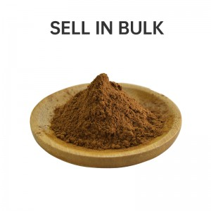 Bulk Organic Cell-wall broken Ganoderma lucidum Spore powder