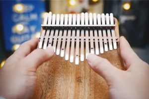 GECKO kalimba cover—Play by April Yang