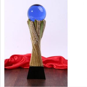 Customized crystal glass globe ball metal resin award trophy  TR0110