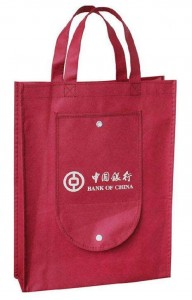Cute hot sale non-woven fabric polyester foldable shopping bag SB0004