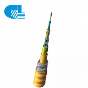 12 Strand 62.5/125 Multimode OM1 Indoor Armored Riser Fiber Optic Cable