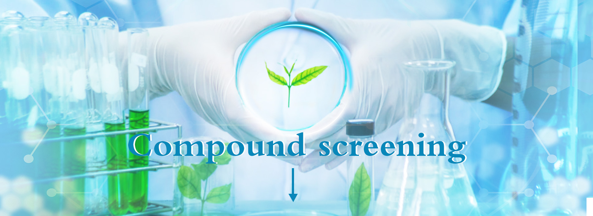 About product banner design