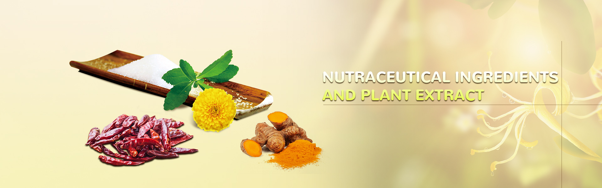 Nutraceutical ingredients  and Plant Extract