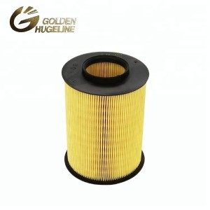 Wholesale Air Filter Car Engine E1010L 1848220 C16134/1 1496204 Air Filter for Cars
