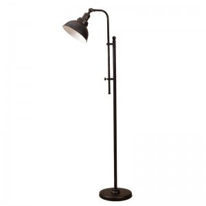 Black and Gold Floor Lamp,Adjustable Head | Goodly Light-GL-FLM120